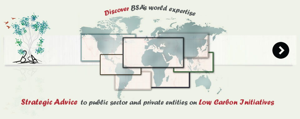 BSA, Business Strategy Advisers, Strategic advice to public sector and private entities on low carbon initiatives